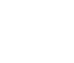 Noriker Ranch Training