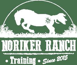 Noriker Ranch Training